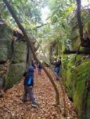 Snaggy Mtn Rock Maze