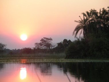 Okavango Delta at sunset